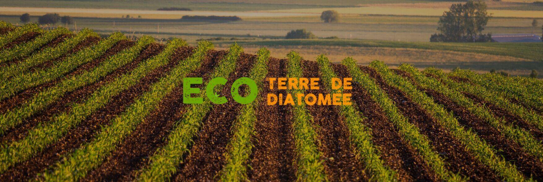 Tienda-Ecotierras-fondo