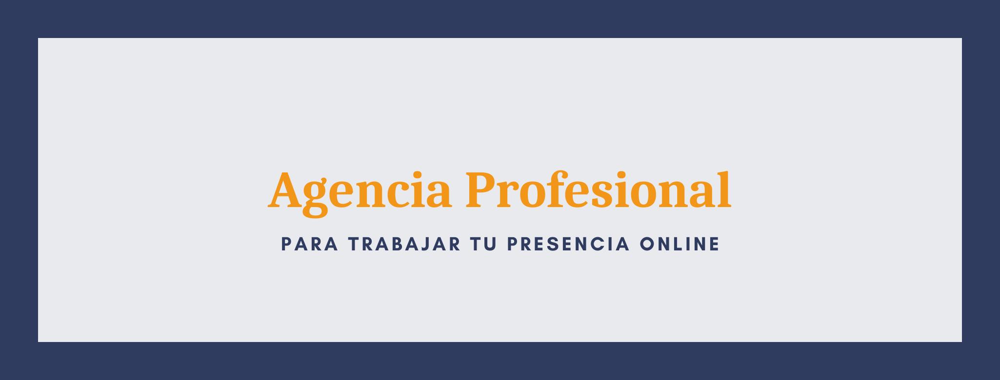 Contar con una agencia profesional para trabajar la presencial online.